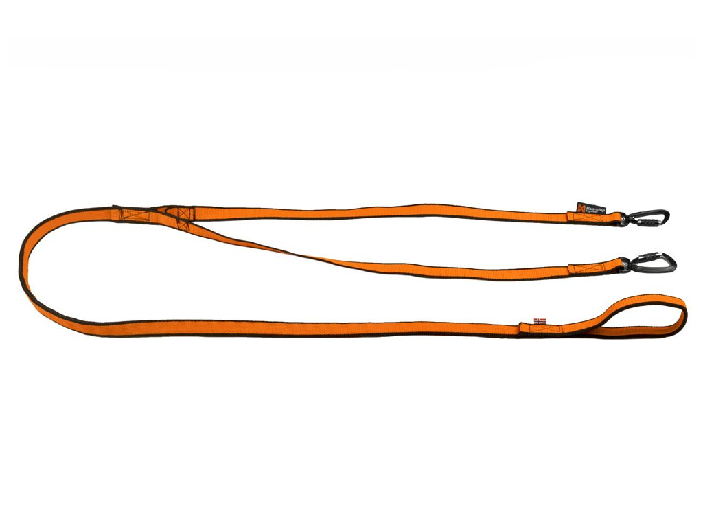 bungee leash double 1