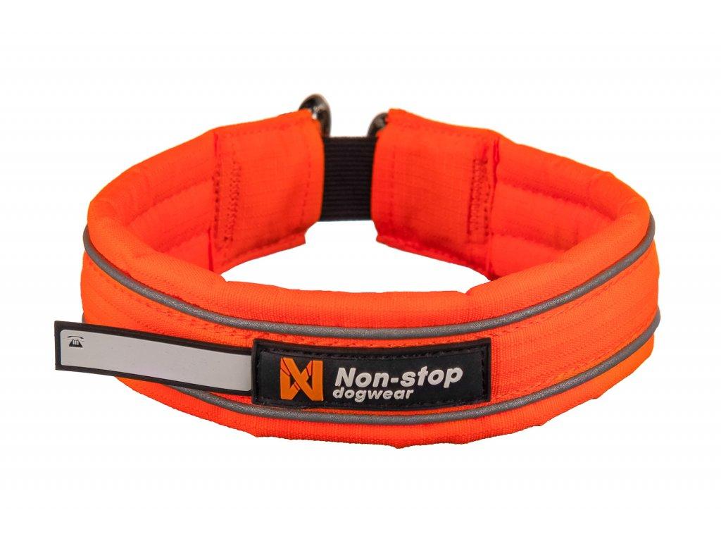 safe collar 2