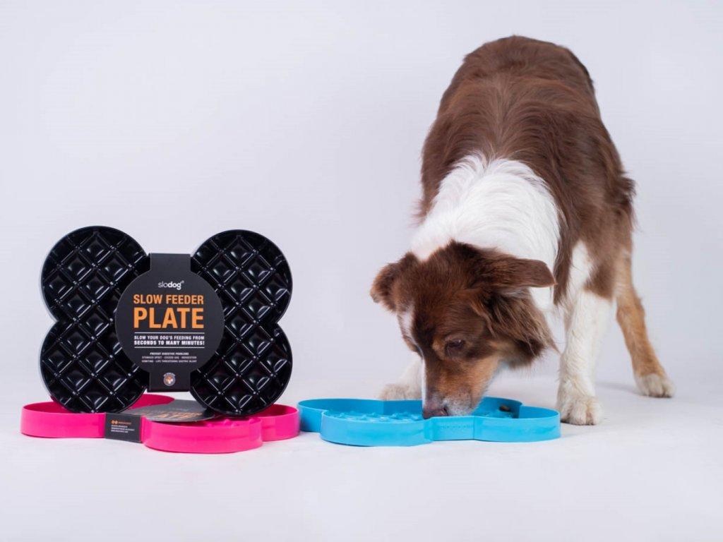 SloDog® - Slow Feeder Plate