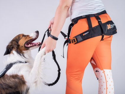 Non-stop dogwear CANIX BELT  + dárek zdarma