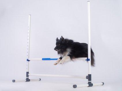 Tréninková agility skoková překážka