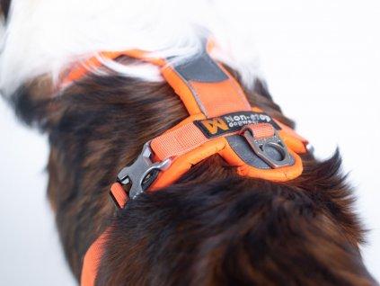 Non-stop dogwear POSTROJ LINE  + výměna velikosti zdarma + pamlsky jako dárek