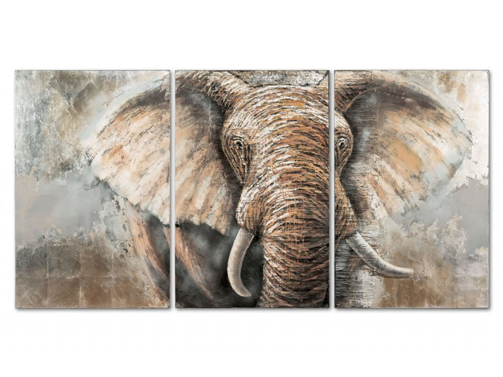 Obraz - slon, ruční olejomalba na plátně. Sada 3 kusů DOR040