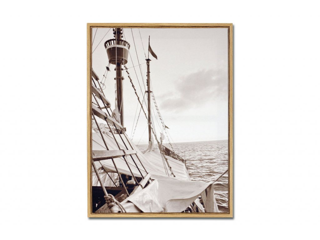 Obraz plátěný v rámečku OBX1004