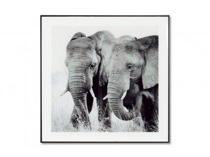 Obraz skleněný 50x50 cm HS064