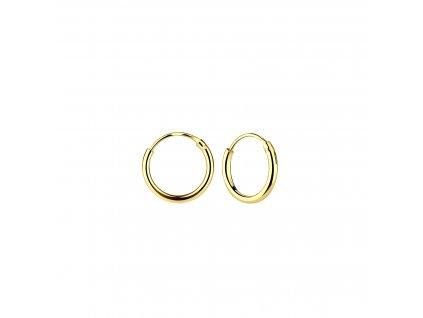 Pozlacené náušnice kruhy 10 mm  Ag 925/1000