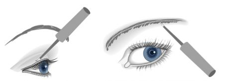 lash_brow_application2-510x163