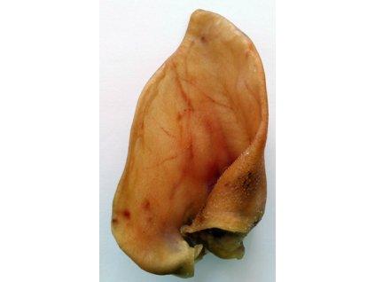 Ucho vepřové sušené 1 ks