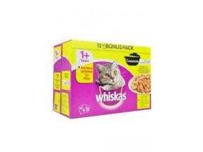 Whiskas kapsa Casserole drůbeží menu v želé 12x85g