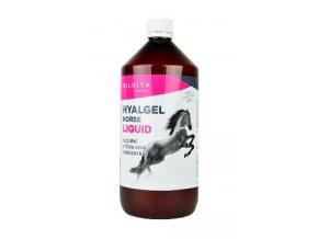 Hyalgel Horse Liquid1000ml