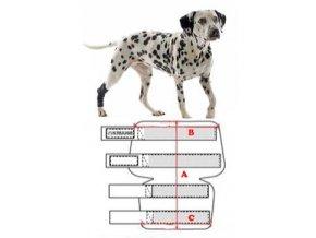 Bandáž na hlezno pro psa KRUUSE Rehab XS