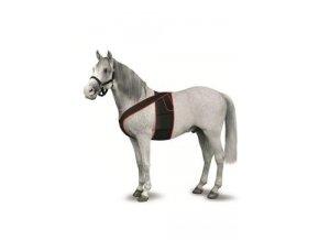 Hrudní pás pro koně k fixaci Televet elektrod Vel.L