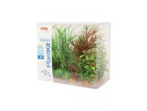 Rostliny akvarijní JALAYA 4 sada Zolux