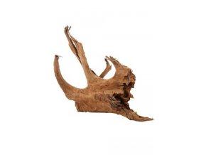 Akvarijní/terarijní kořen Mangrove L 2,4kg Zolux
