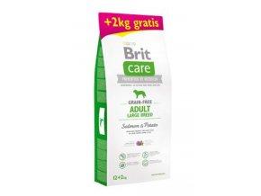 Brit Care Dog Grain-free Adult LB Salmon&Potato 12+2kg