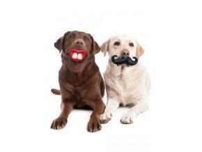 Hračka pes Knír/Pusa guma 7,5x13,5x5cm KAR