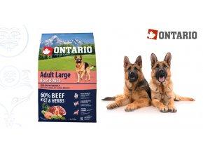 Ontario Adult Large Beef & Rice 2,25 kg