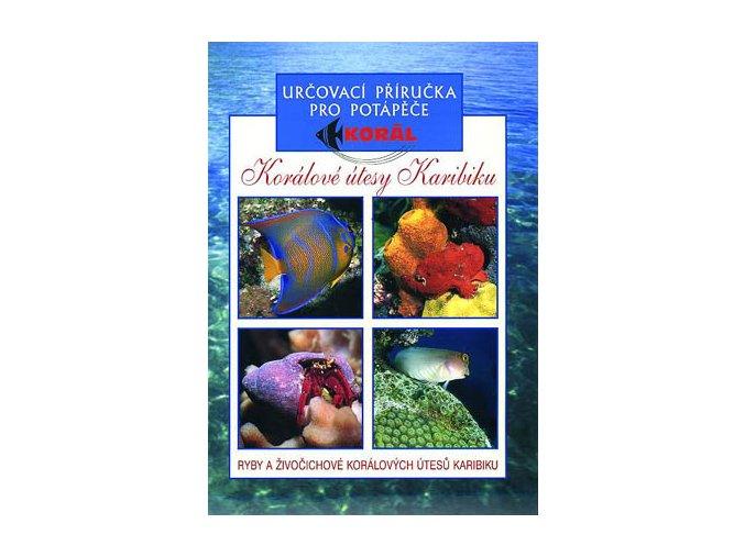 Korálové útesy Karibiku