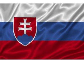 Vlajka Slovinsko 20x30cm