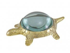 Lupa - želva