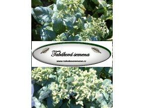 Tabák Mohawk - 100 semen