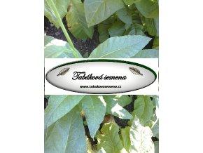 Tabák Southern Beauty - 100 semen