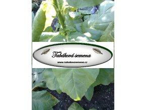 Tabák Tasoua - 100 semen
