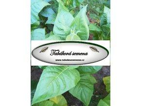 Tabák American 14 - 100 semen