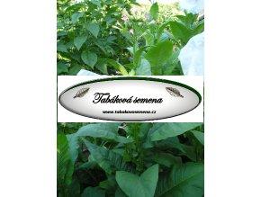 Tabák Cherry Red - 100 semen