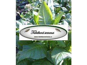 Tabák Biano - 100 semen