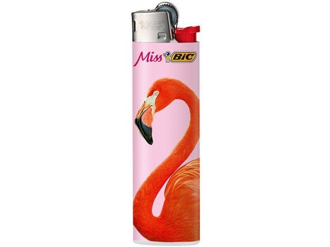 bic flamingos 04