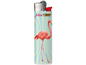 bic flamingos 03