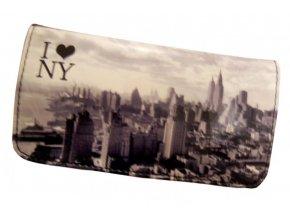 new york photo 01