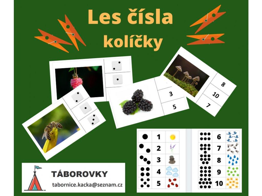 Bingo příroda (7)