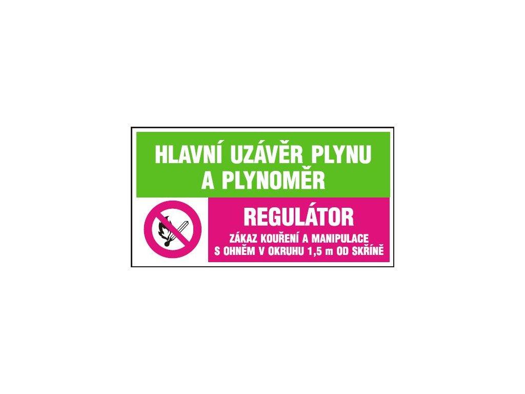 Hlavní uzávěr plynu a plynoměr - Regulátor