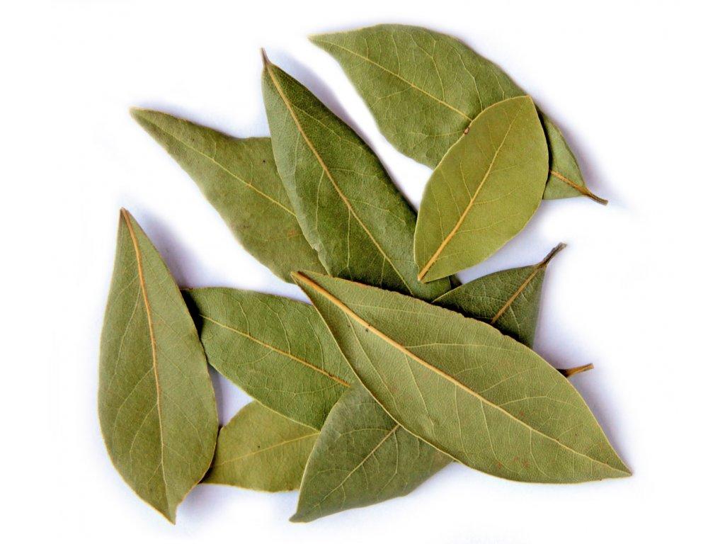 Výsledek obrázku pro bobkový list