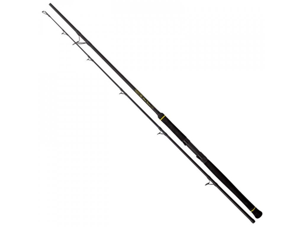 Black Cat Passion Black Spin  2,7m 50-200g