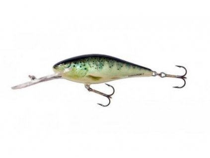 Wobler Salmo EXECUTOR-RTR (Velikost EX5SDR 5cm)