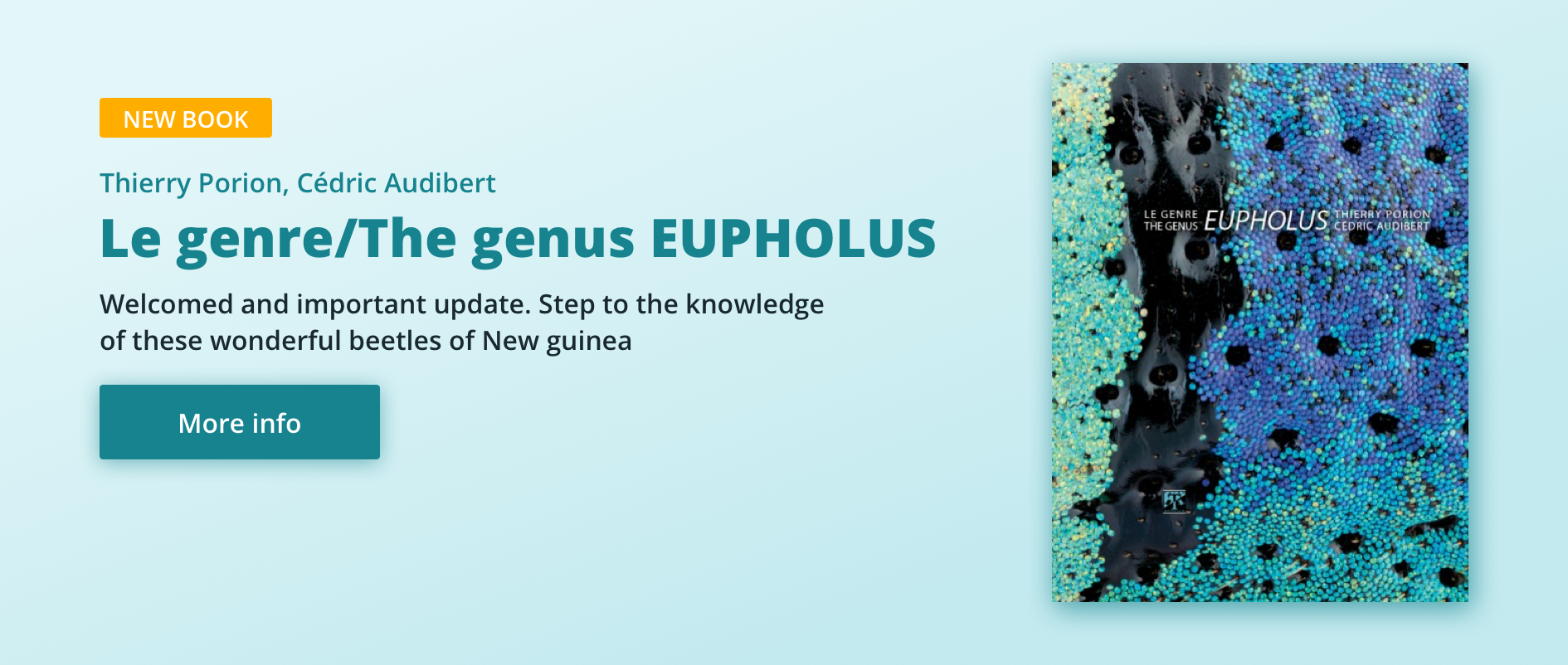 Le genre/The genus EUPHOLUS