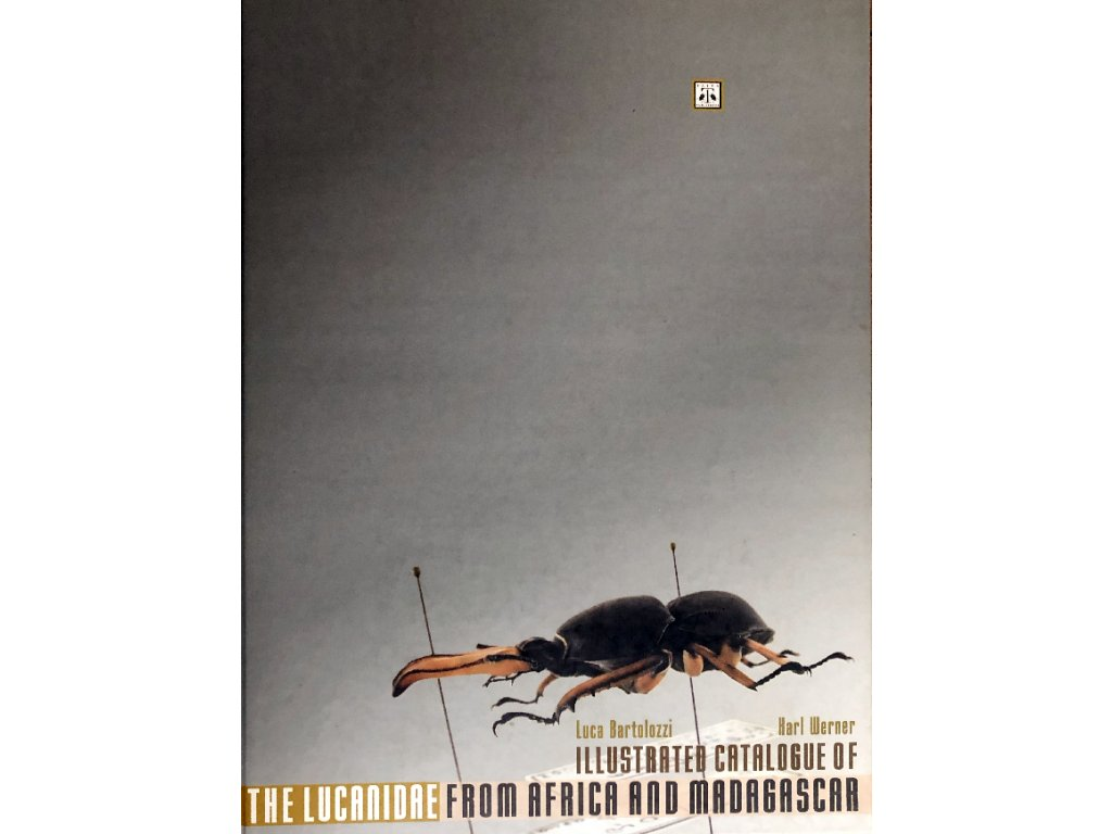 African Lucanidae