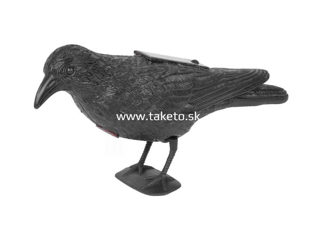 Plašič vtákov Havran čierny, solárny, zvuk  + praktický pomocník k objednávke