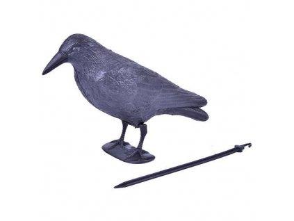 Plašič vtákov Havran čierny, 38 cm  + praktický pomocník k objednávke