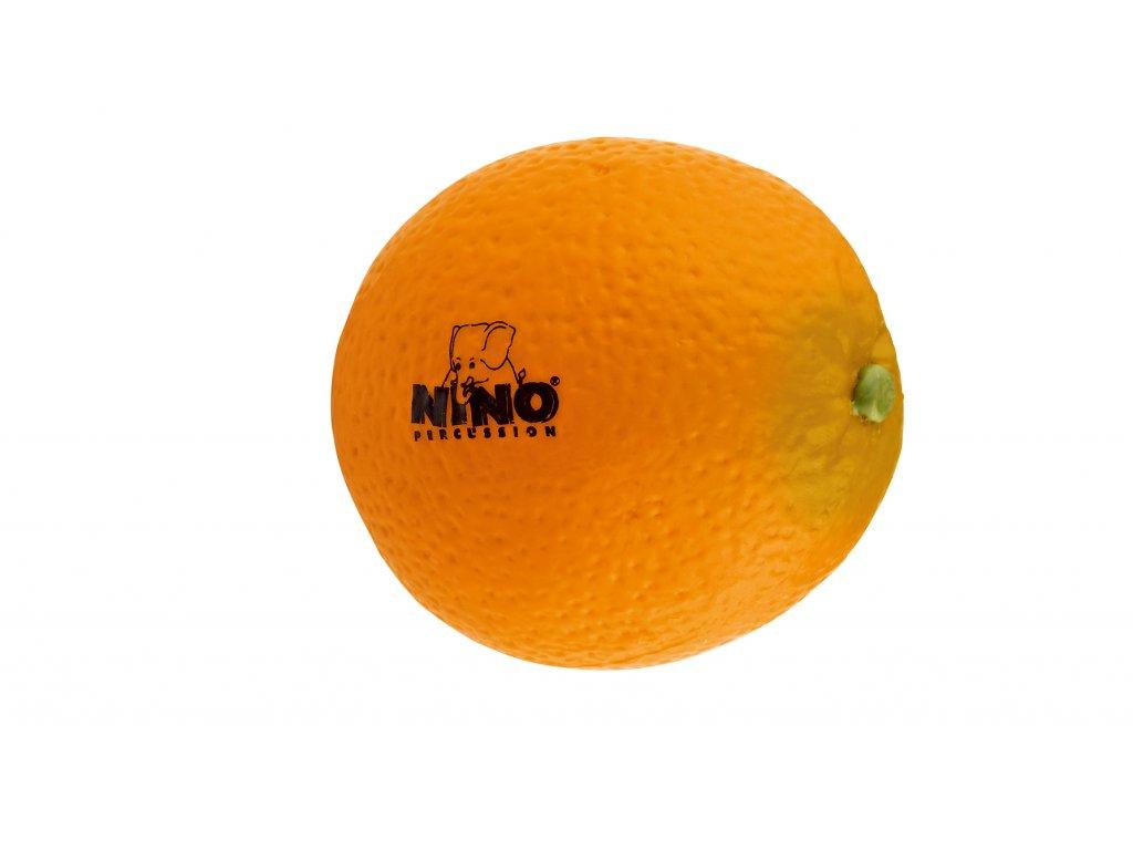 231869 NINO598