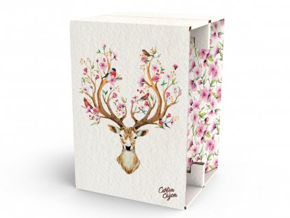 Carton Cajon Deer Spring 1