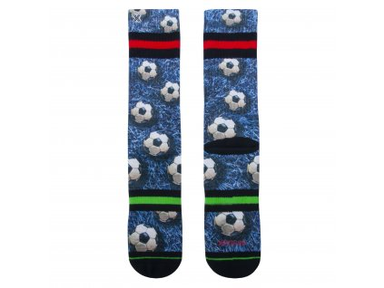 Pánské ponožky 60195
