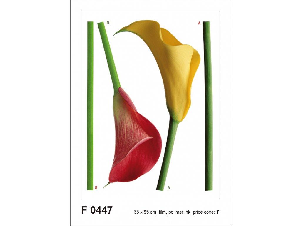 F0447 Samolepicí dekorace KALY 65 x 85 cm