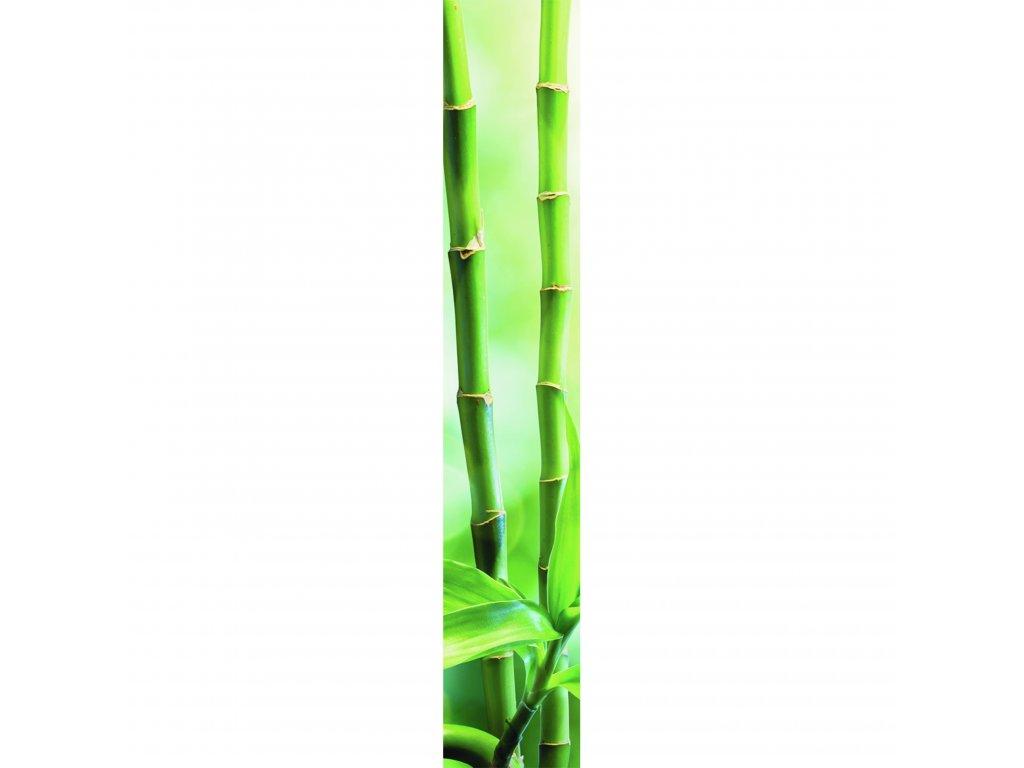 Vliesový panel Caselio 67077177, kolekce ACCENT, materiál vlies, styl moderní 50 x 280 cm