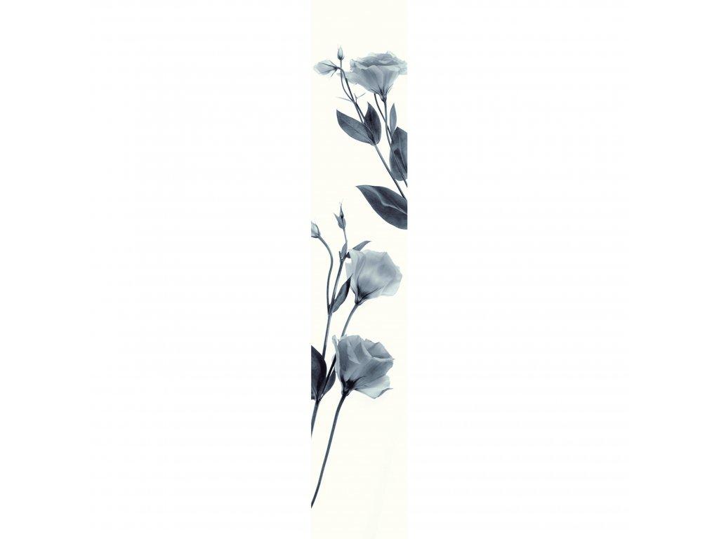 Vliesový panel Caselio 67079300, kolekce ACCENT, materiál vlies, styl moderní 50 x 280 cm