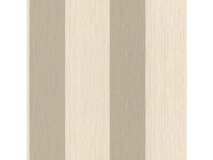 Vliesová tapeta na zeď Rasch 887761, kolekce Perfecto, styl moderní, 0,53 x 10,05 m