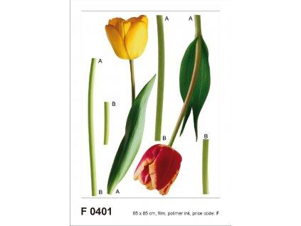 F0401 Samolepicí dekorace 2 TULIPS 65 x 85 cm